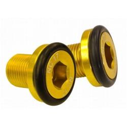 Kurbelschrauben M12, gold_1254